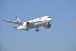 fukucyanさんが、成田国際空港で撮影した全日空 787-8 Dreamlinerの航空フォト(写真)