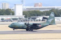 ANA744Foreverさんが、名古屋飛行場で撮影した航空自衛隊 C-130H Herculesの航空フォト(写真)