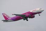 apphgさんが、那覇空港で撮影したピーチ A320-214の航空フォト(写真)