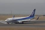 hiroki-JA8674さんが、中部国際空港で撮影した全日空 737-781の航空フォト(写真)