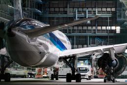 quamen88さんが、伊丹空港で撮影した全日空 787-8 Dreamlinerの航空フォト(飛行機 写真・画像)