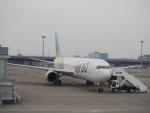 yossy602Aさんが、羽田空港で撮影したAIR DO 767-381/ERの航空フォト(写真)