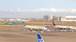誘喜さんが、羽田空港で撮影したベトナム航空 A350-941XWBの航空フォト(写真)