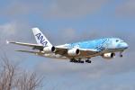 トロピカルさんが、成田国際空港で撮影した全日空 A380-841の航空フォト(写真)