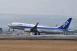 ワイエスさんが、熊本空港で撮影した全日空 737-8ALの航空フォト(写真)