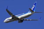 ピーチさんが、岡山空港で撮影した全日空 737-881の航空フォト(写真)