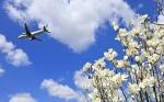 くれないさんが、高松空港で撮影した春秋航空 A320-214の航空フォト(飛行機 写真・画像)