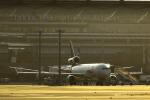 リョウさんが、羽田空港で撮影したフェデックス・エクスプレス MD-11Fの航空フォト(写真)