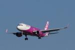 HYTRさんが、福岡空港で撮影したピーチ A320-200の航空フォト(写真)