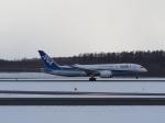 noshi2さんが、新千歳空港で撮影した全日空 787-8 Dreamlinerの航空フォト(写真)