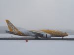 noshi2さんが、新千歳空港で撮影したスクート 787-8 Dreamlinerの航空フォト(写真)