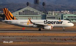 RINA-281さんが、小松空港で撮影したタイガーエア台湾 A320-232の航空フォト(写真)