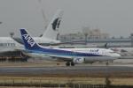 鴎の爪団さんが、成田国際空港で撮影したANAウイングス 737-54Kの航空フォト(写真)