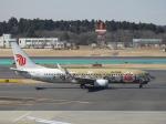 SKY☆MOTOさんが、成田国際空港で撮影した中国国際航空 737-89Lの航空フォト(写真)