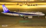 RINA-281さんが、中部国際空港で撮影した全日空 A320-271Nの航空フォト(写真)