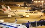 RINA-281さんが、中部国際空港で撮影した日本航空 767-346/ERの航空フォト(写真)