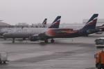 BTYUTAさんが、シェレメーチエヴォ国際空港で撮影したアエロフロート・ロシア航空 A321-211の航空フォト(写真)