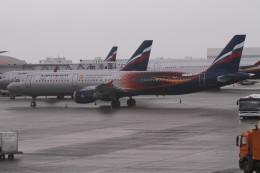 BTYUTAさんが、シェレメーチエヴォ国際空港で撮影したアエロフロート・ロシア航空 A321-211の航空フォト(飛行機 写真・画像)
