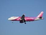 commet7575さんが、福岡空港で撮影したピーチ A320-214の航空フォト(写真)
