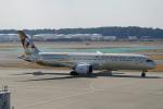 ちゃぽんさんが、成田国際空港で撮影したエティハド航空 787-9の航空フォト(写真)