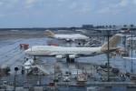 ☆ライダーさんが、成田国際空港で撮影したアトラス航空 747-481の航空フォト(写真)