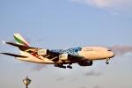 m_aereo_iさんが、成田国際空港で撮影したエミレーツ航空 A380-861の航空フォト(写真)