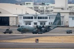 まんぼ しりうすさんが、名古屋飛行場で撮影した航空自衛隊 C-130H Herculesの航空フォト(写真)