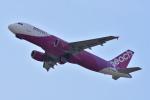 JA56SSさんが、関西国際空港で撮影したピーチ A320-214の航空フォト(写真)