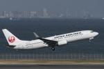 RYO13さんが、羽田空港で撮影した日本航空 737-846の航空フォト(写真)