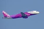 simokさんが、関西国際空港で撮影したピーチ A320-214の航空フォト(写真)