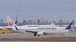 オキシドールさんが、成田国際空港で撮影した日本航空 737-846の航空フォト(写真)