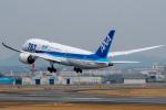 KAIHOさんが、伊丹空港で撮影した全日空 787-8 Dreamlinerの航空フォト(写真)