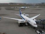 カップメーンさんが、羽田空港で撮影した全日空 787-8 Dreamlinerの航空フォト(写真)