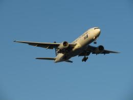 カップメーンさんが、羽田空港で撮影した全日空 777-281の航空フォト(写真)