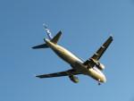 カップメーンさんが、羽田空港で撮影した全日空 A320-211の航空フォト(写真)
