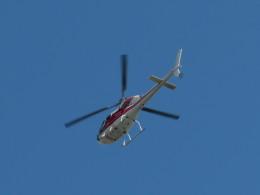 カップメーンさんが、東京都港区で撮影した小川航空 AS355F2 Ecureuil 2の航空フォト(写真)