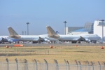 SKY☆101さんが、成田国際空港で撮影したアトラス航空 747-481の航空フォト(写真)