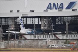 Dreamliner_NRT51さんが、成田国際空港で撮影した全日空 A380-841の航空フォト(写真)