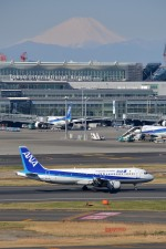 トロピカルさんが、羽田空港で撮影した全日空 A320-211の航空フォト(写真)