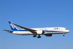 zero1さんが、成田国際空港で撮影した全日空 787-9の航空フォト(写真)
