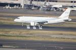電車の運転士さんが、羽田空港で撮影したグローバル・ジェット・ルクセンブルク A319-115CJの航空フォト(写真)