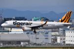 れんしさんが、福岡空港で撮影したタイガーエア台湾 A320-232の航空フォト(写真)