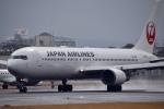 くれくんさんが、伊丹空港で撮影した日本航空 767-346/ERの航空フォト(飛行機 写真・画像)