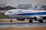 くれくんさんが、伊丹空港で撮影した全日空 737-881の航空フォト(飛行機 写真・画像)