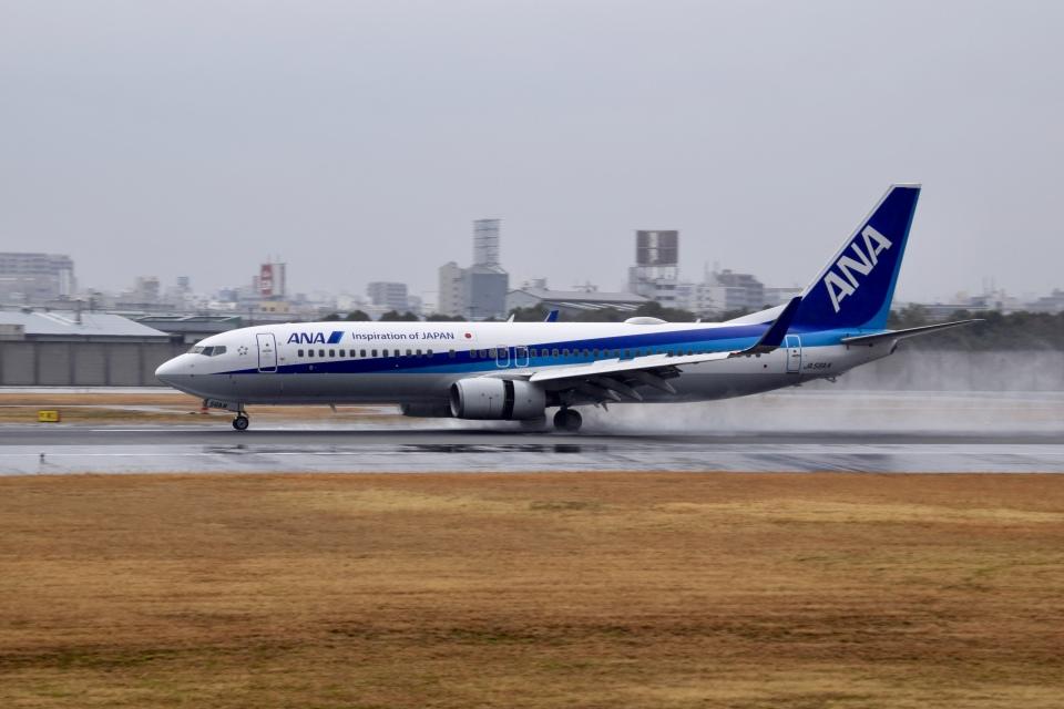 くれくんさんの全日空 Boeing 737-800 (JA56AN) 航空フォト