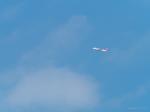 MASACHANさんが、宮崎空港で撮影したイースター航空 737-8-MAXの航空フォト(写真)
