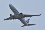 ワイエスさんが、福岡空港で撮影した全日空 737-881の航空フォト(写真)