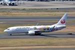 トロピカルさんが、羽田空港で撮影した日本航空 737-846の航空フォト(写真)