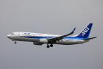 TAKAHIDEさんが、新潟空港で撮影した全日空 737-8ALの航空フォト(写真)