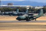TAKAHIDEさんが、名古屋飛行場で撮影した航空自衛隊 C-130H Herculesの航空フォト(写真)